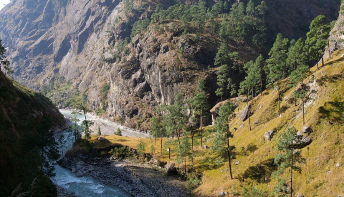 Nepal (82)